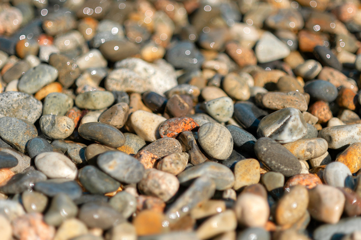 Glistening Pebbles - Little Hunter's Beach