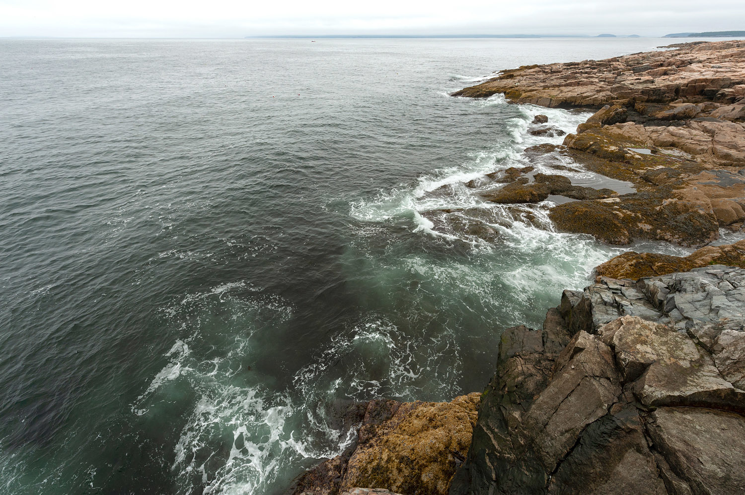 Rocky Cliffs - Schoodic Peninsula
