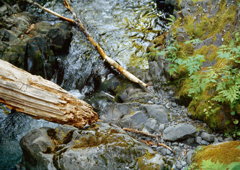 Canyon Creek no. 2
