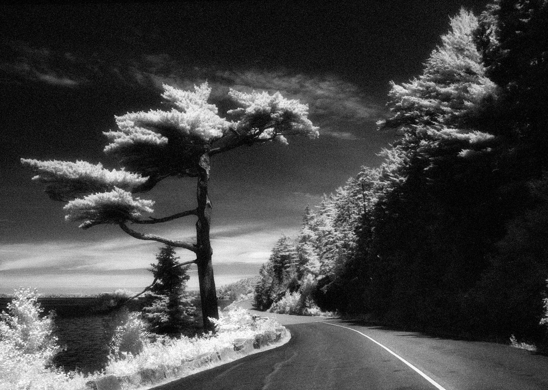 Sargeant Drive