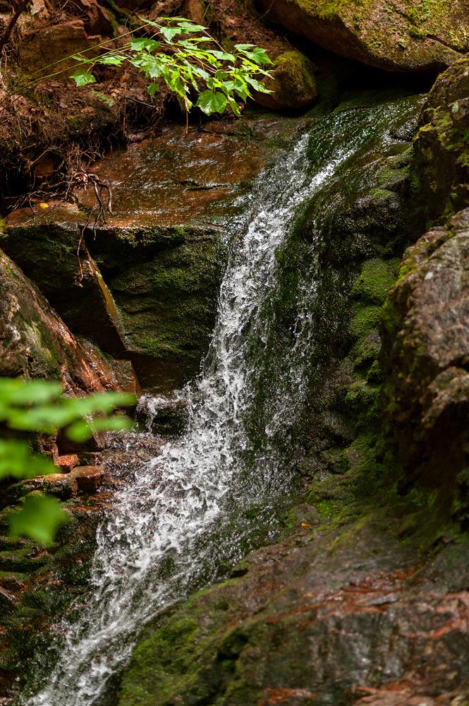 Mossy Falls - Gorge Path