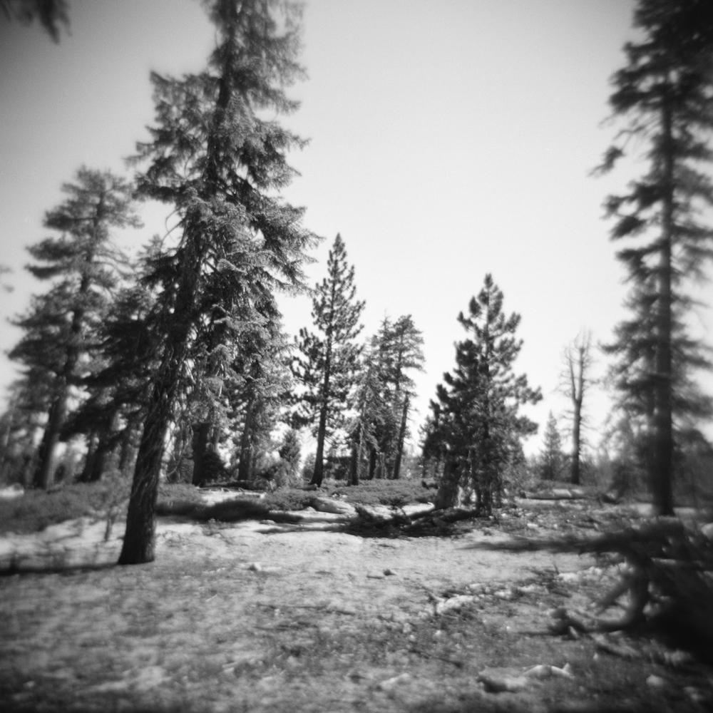 Snow Creek Trail no. 1