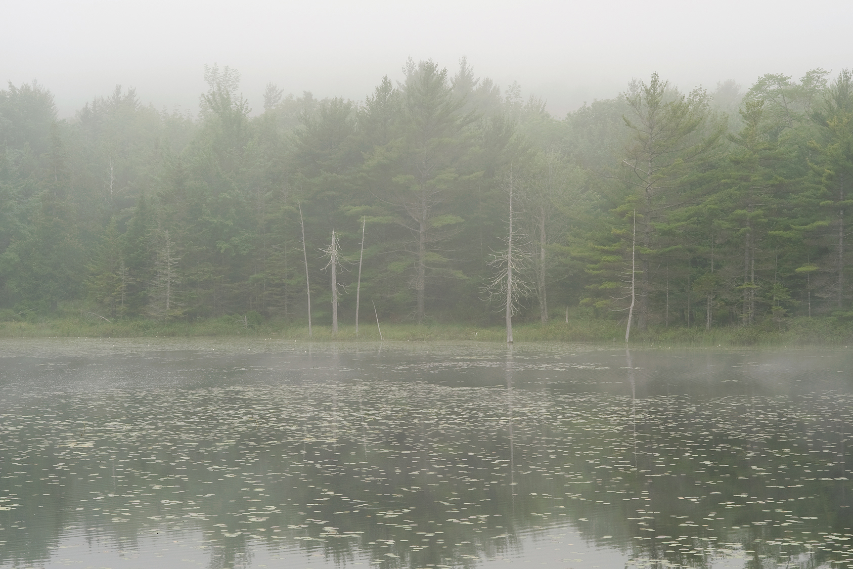 Clearing Fog - Breakneck Ponds
