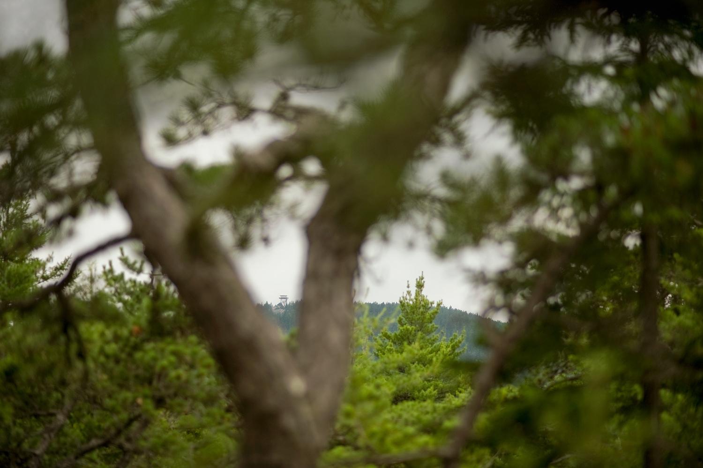 Beech Mountain Firetower - St Sauveur Trail