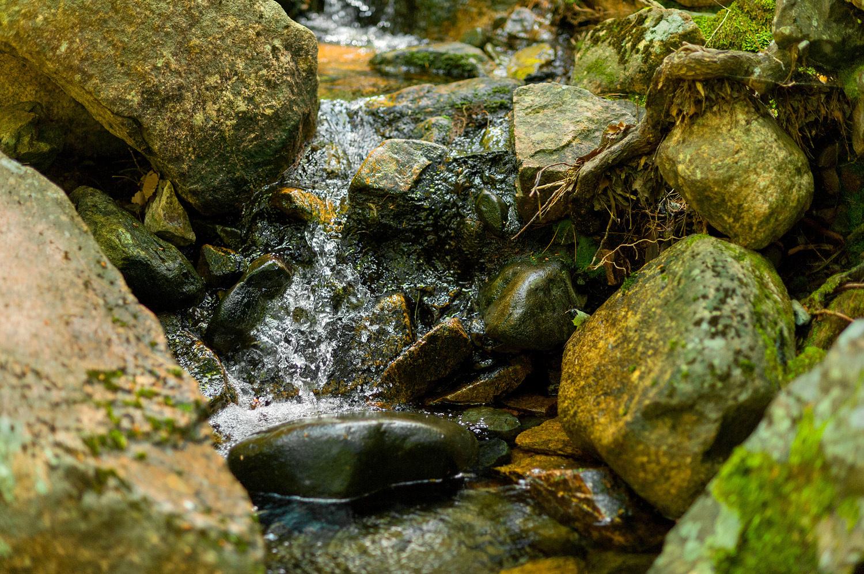 Sargent Brook