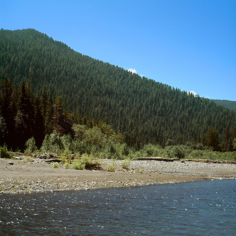 The Hoh River no. 3