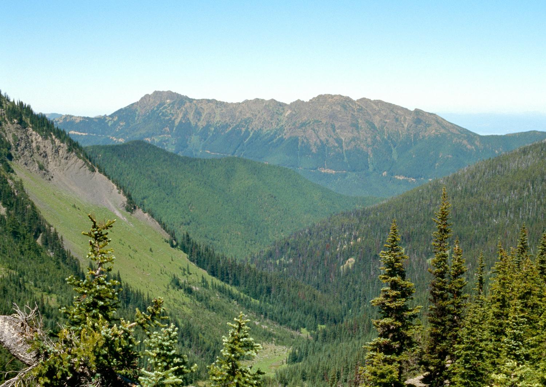 Klahhane Ridge no. 1