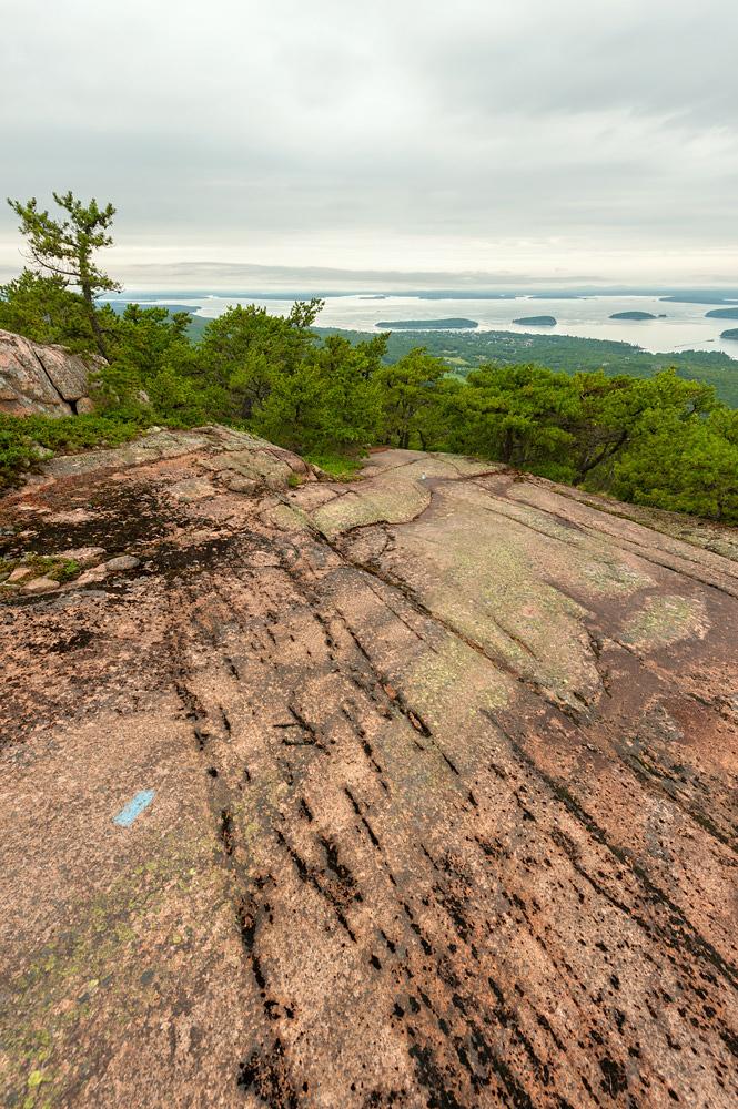 Exposed Granite & Porcupines - North Ridge Trail