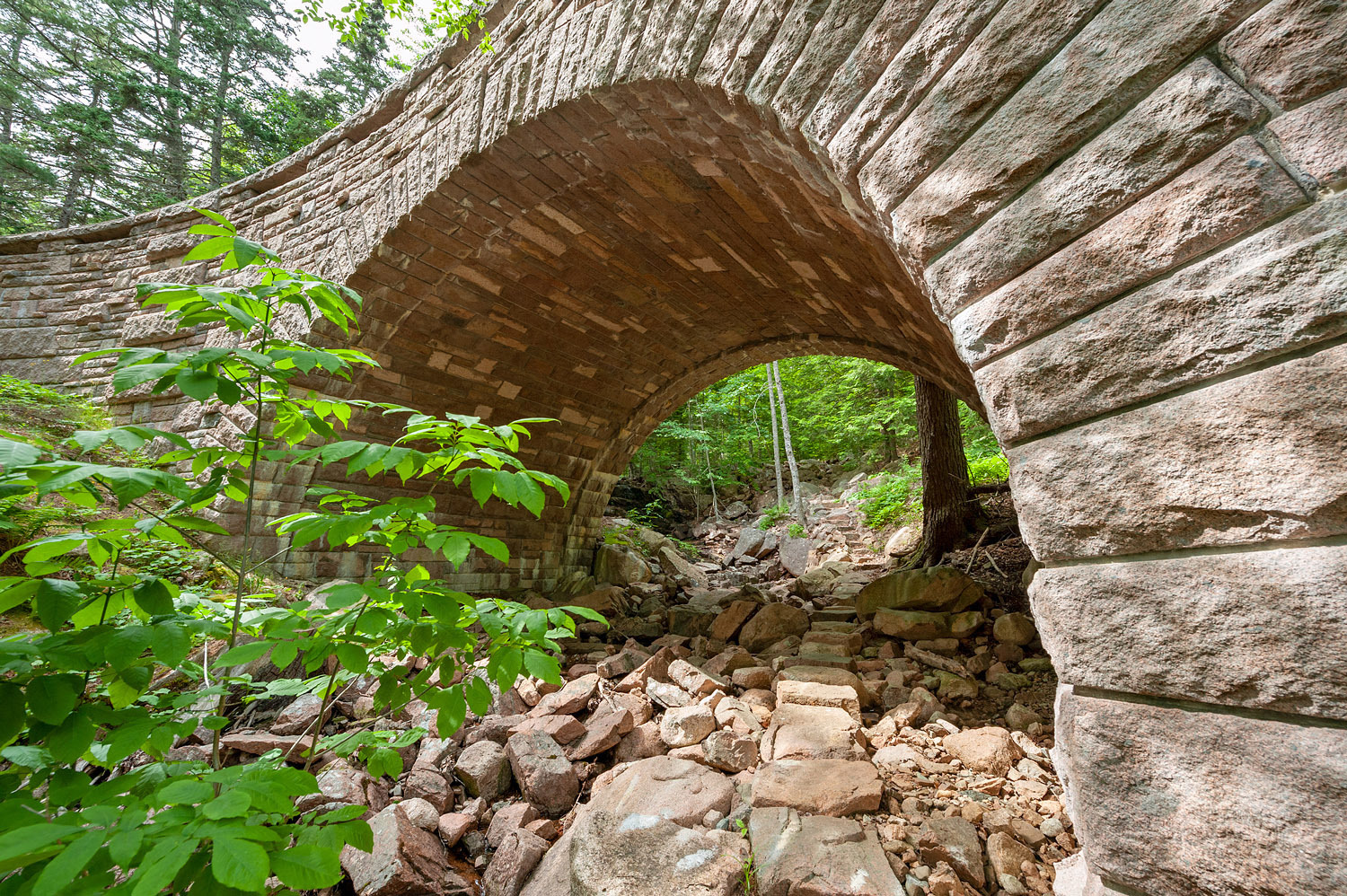 Amphitheater Bridge no. 1 - Amphitheater Trail
