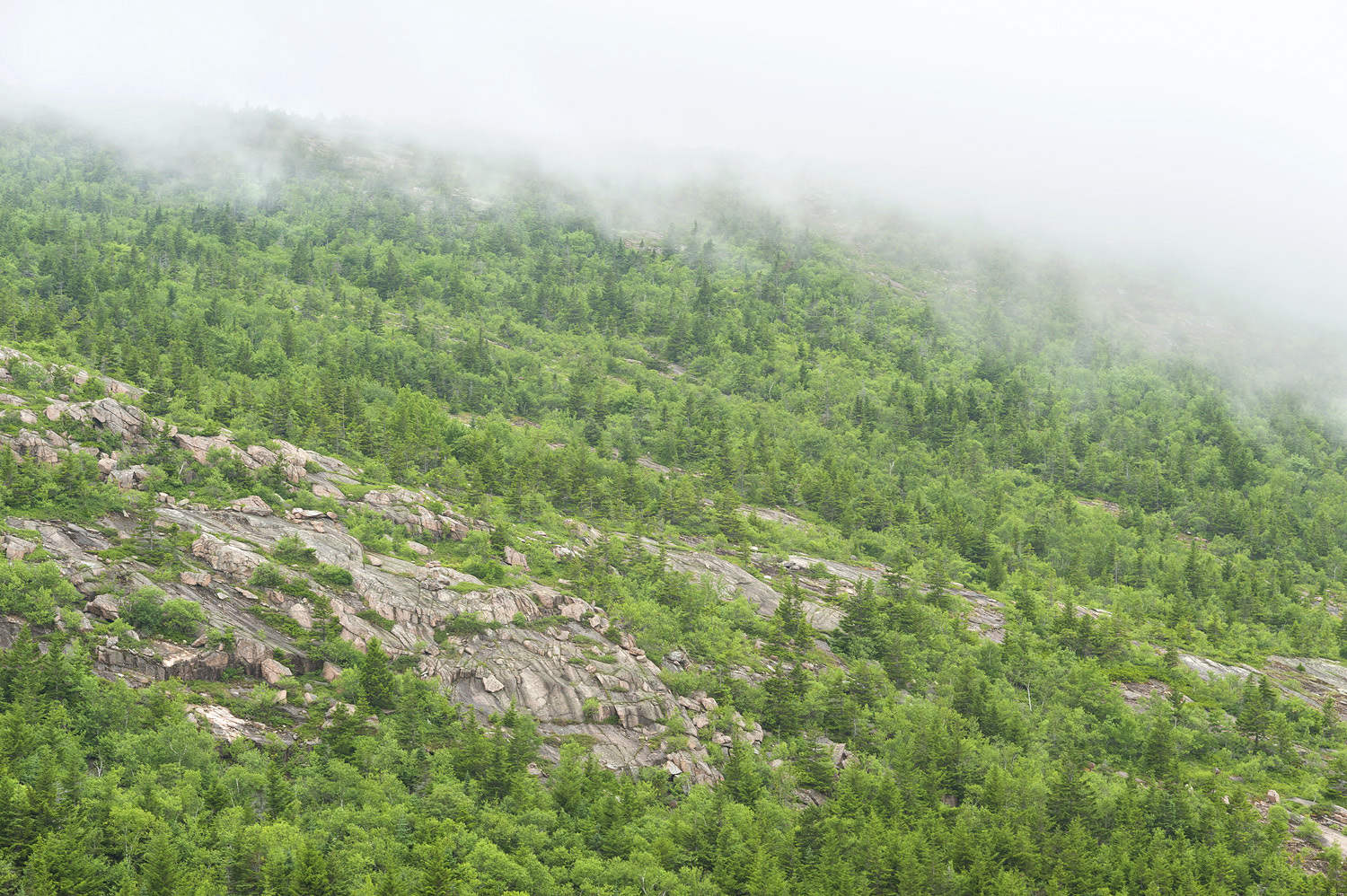 Cadillac Mountain Bathed in Clouds no. 2