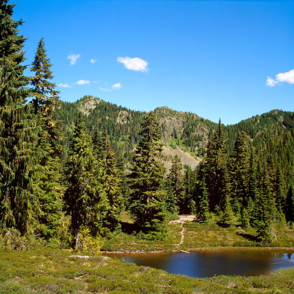 Snowmelt Pond no. 1