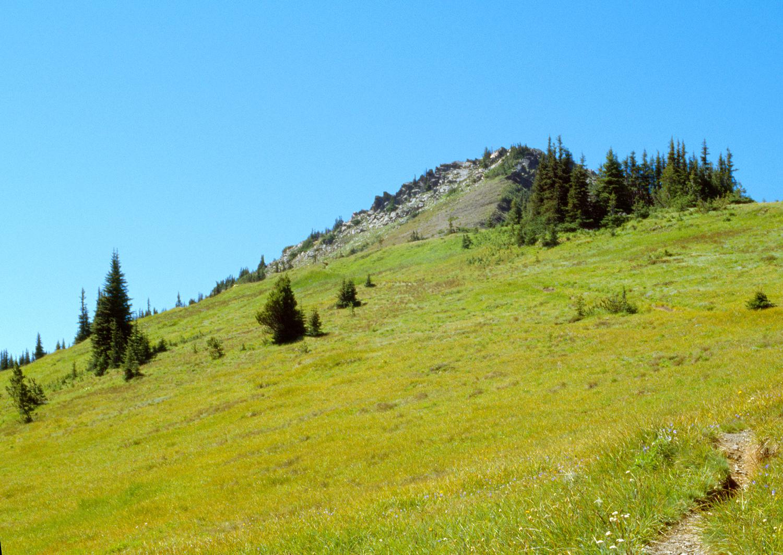 Green Mountain no. 1