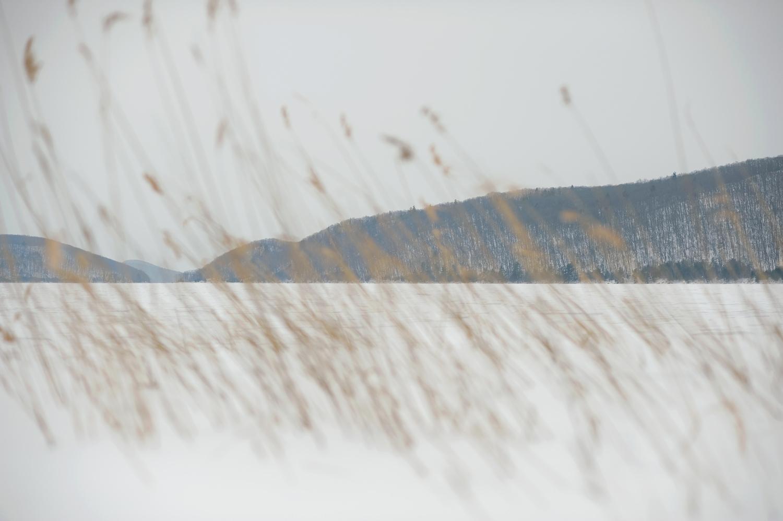 Mount-L-no.-1.jpg