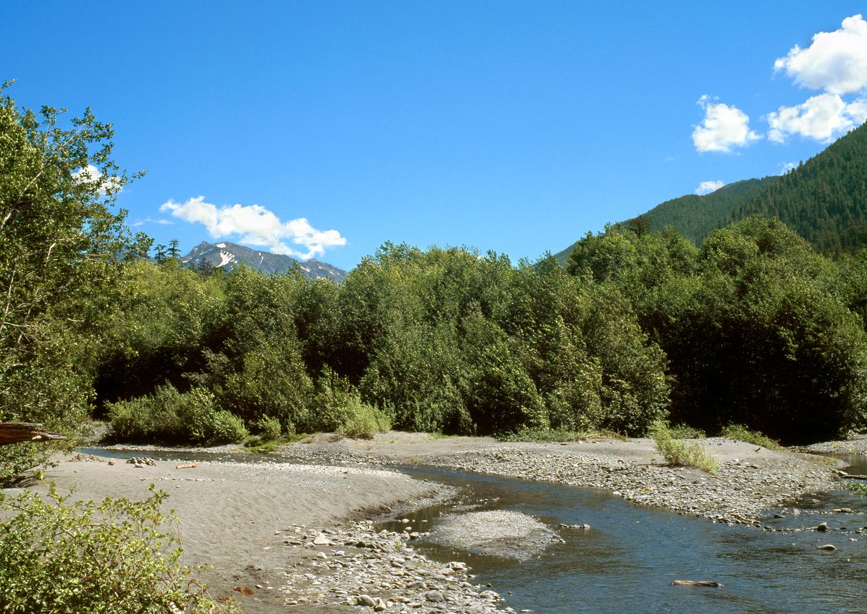 The Hoh River no. 2