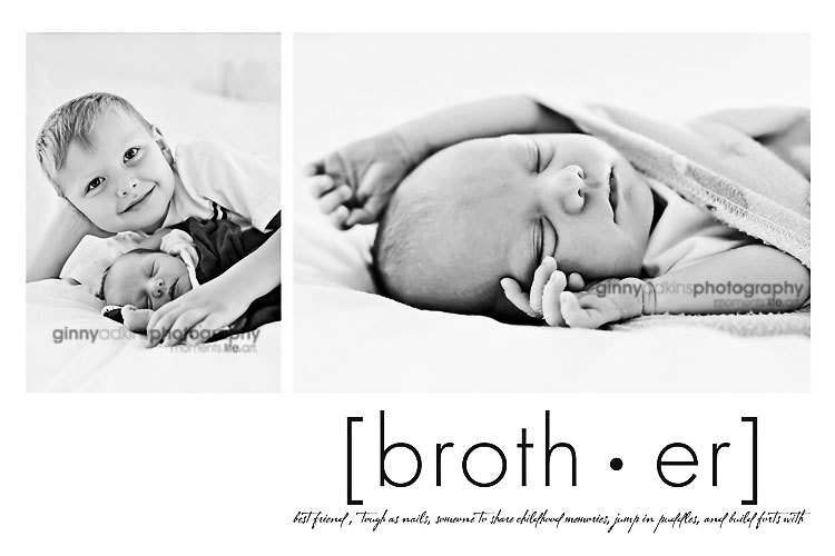 newborn sibling photography viera melbourne