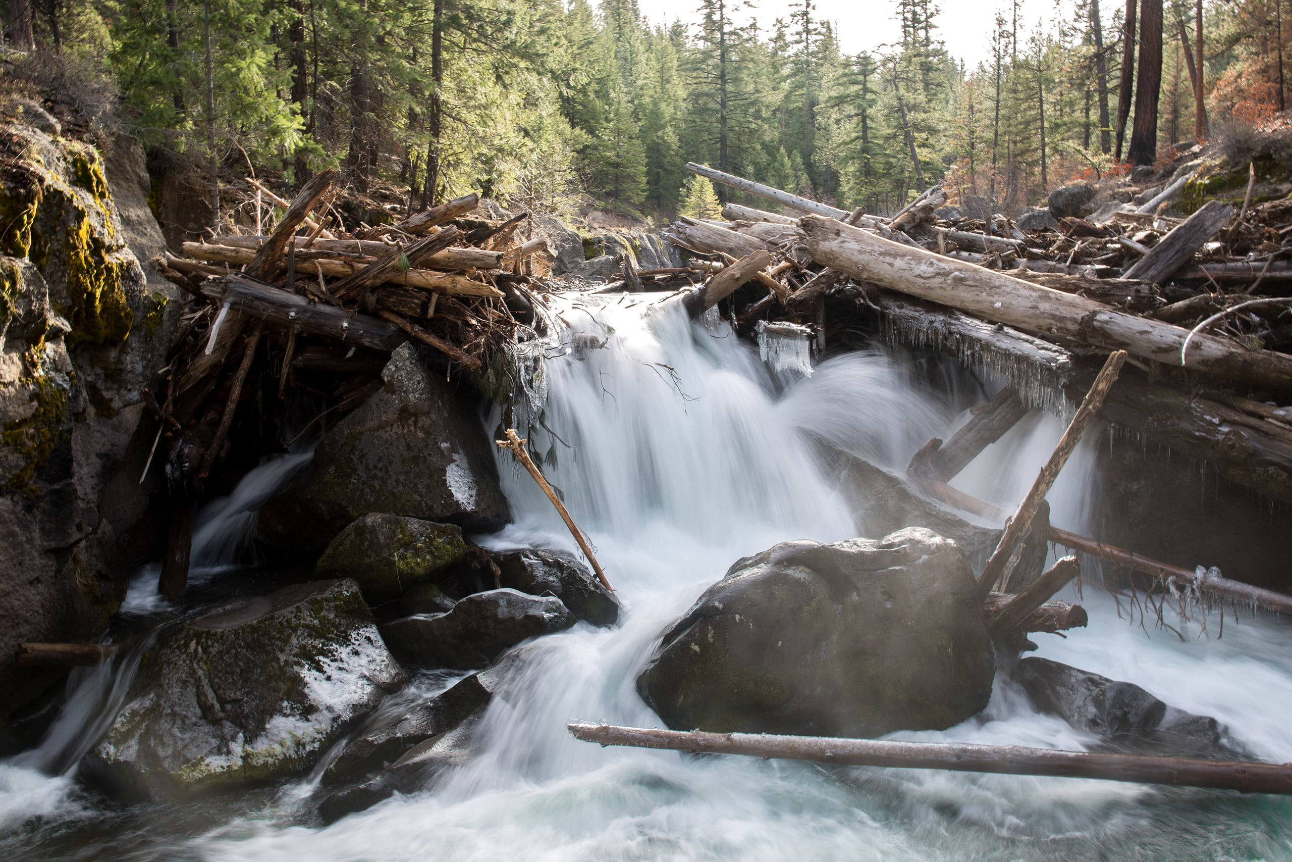 Whychus Creek - Trail 4070