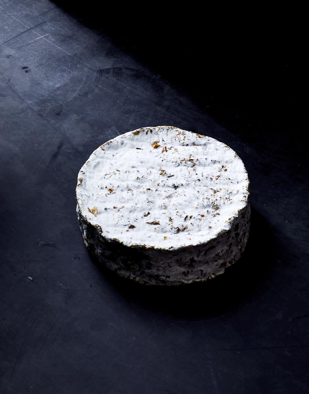 203560_cheese_11042.jpg
