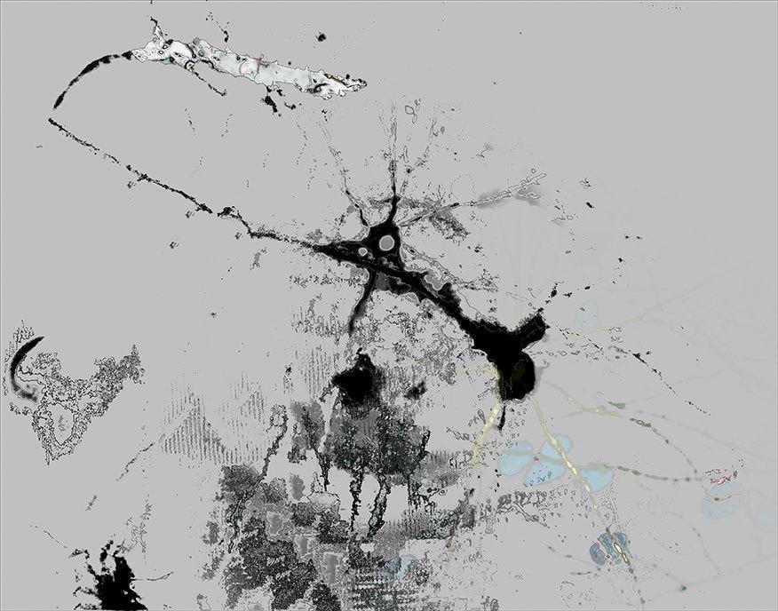 Neuroscions-8.jpg