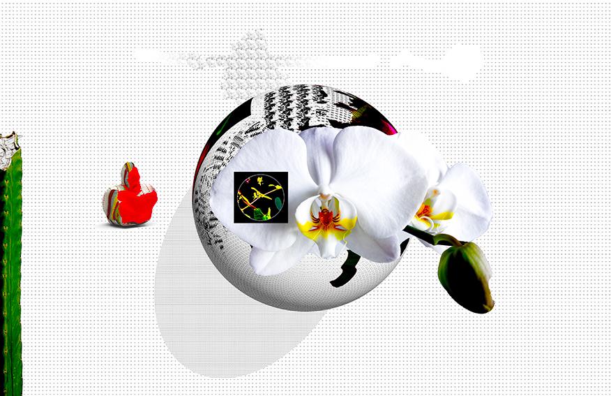 caprices 1.jpg
