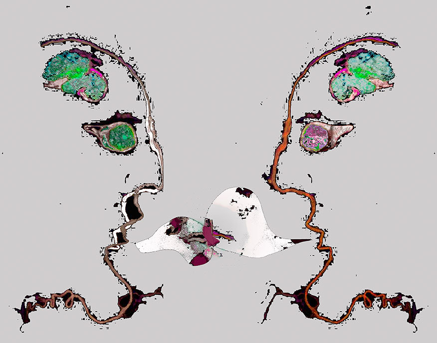Neuroscions-211.jpg
