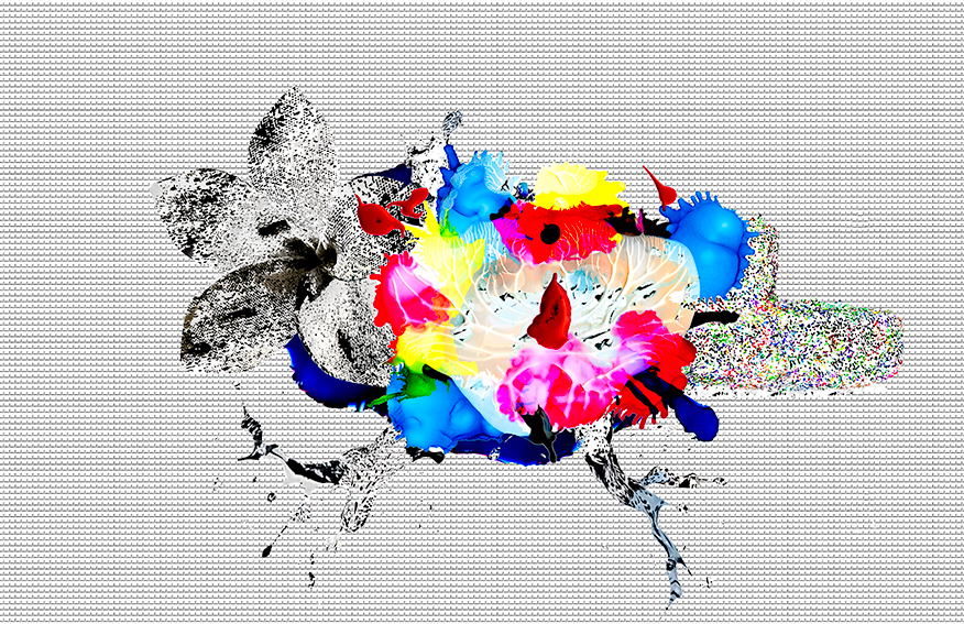 palettes 1.jpg