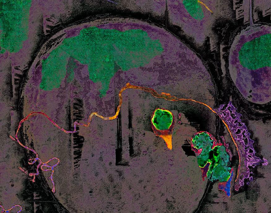 Neuroscions-3.jpg