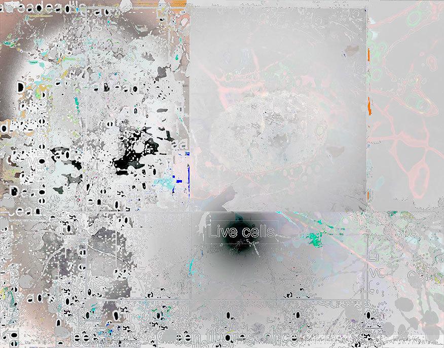 Neuroscions-111.jpg